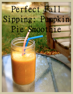Pefect Fall Sipping - Pumpkin Pie Smoothie